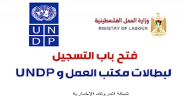 للعمال والخريجين فتح باب تحديث بيانات و التسجيل لبطالات مكتب العمل و الـ UNDP Gaza